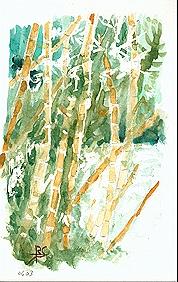 117 Bambou